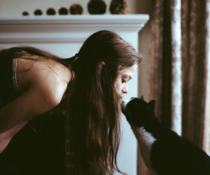 beautiful, body, and cat image