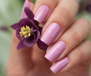 flower, nail polish, and lilac image