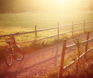 bike, country, and evening image