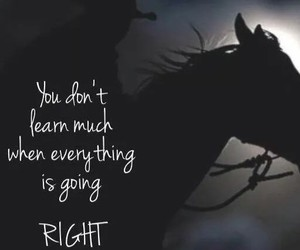 horse, learn, and Right image