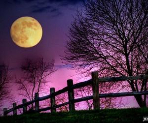 full moon, moon, and purple image