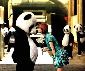 panda, kiss, and flowers image