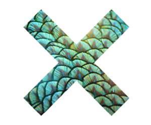xx and the xx image
