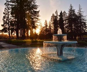 تفسير الماء في الحلم   رؤية الماء في المنام   تفسير شرب الماء بالحلم