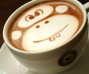 monkey, coffee, and drink image