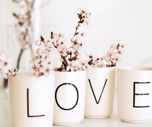 love, flowers, and cup image