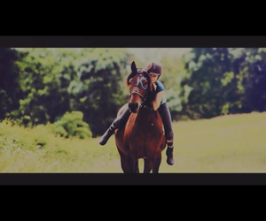 equestrian, freedom, and friendship image