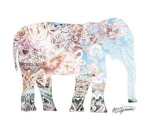 elephant, animal, and boho image