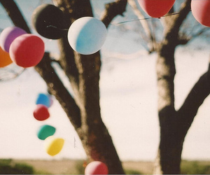 balloons and tree image