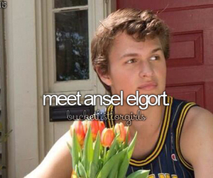 ansel elgort and before i die image