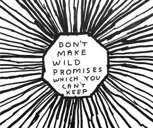 quote, promise, and wild image