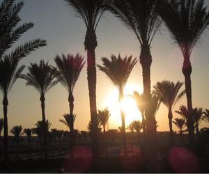sun and marsa alam image