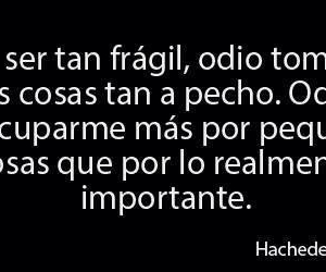 frases and hate image
