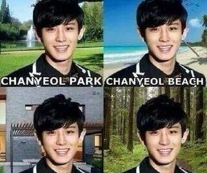 beach, forest, and k pop image