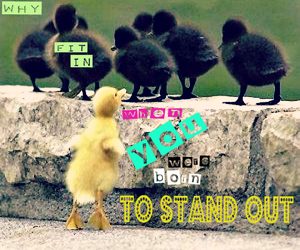 baby, birds, and quote image