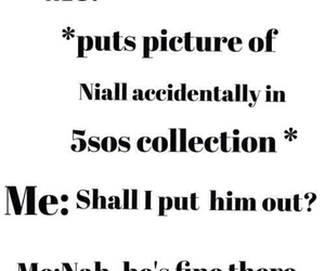 funny, niall horan, and 5 seconds of summer image