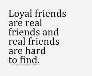 loyal and friends image