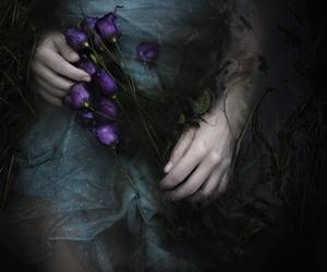 flowers, dark, and Dream image
