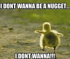 funny, nugget, and cute image