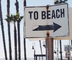 beach, cali, and palm trees image