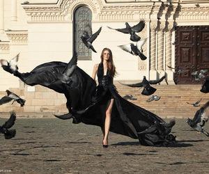 black, model, and bird image