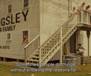 quotes, movie, and moonrise kingdom image