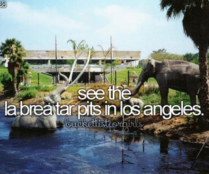 beforeidie, california, and quality image