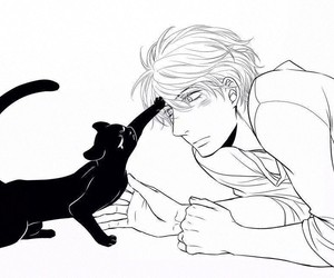 cat, sweet, and kawaii image