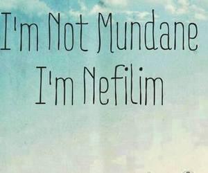 nefilim, book, and mundane image