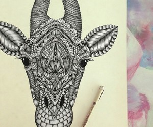 animal, drawing, and draw image