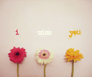 flowers, i miss you, and miss image