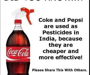 coca cola, india, and coke image