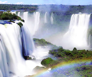 brazil and nature image