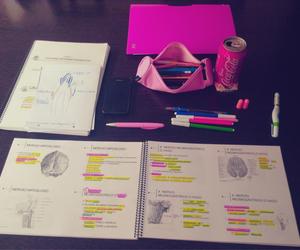 motivation, university, and dentistry image