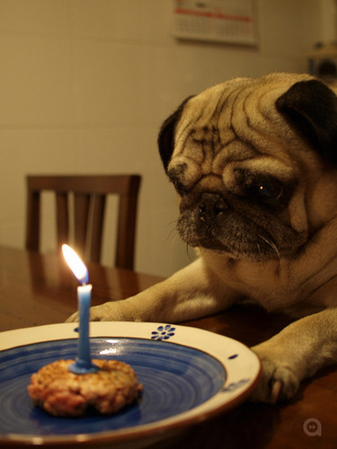 Lonely Bday uploaded by Blacklillium on We Heart It