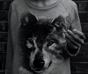 wolf, black and white, and shirt image