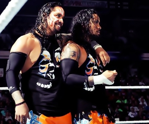 wwe, superstars, and the usos image