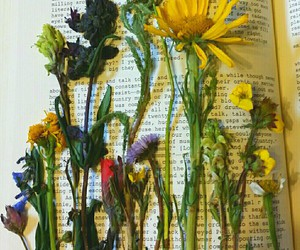 book, lovely, and nature image