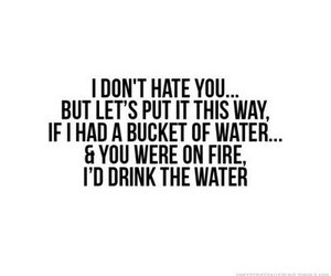 hate, quote, and water image