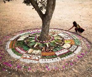 mandala, nature, and tree image