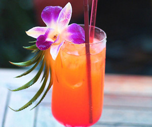 drink, flower, and cocktail image