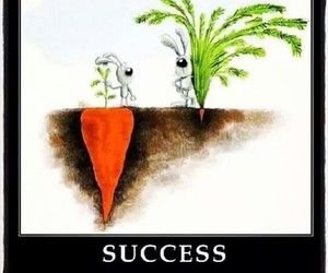 carrots, quote, and real image