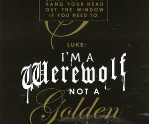 LUke, quote, and mortal instruments image