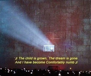 Pink Floyd, comfortably numb, and Lyrics image