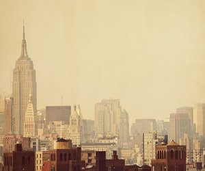 brown, new york city, and d image
