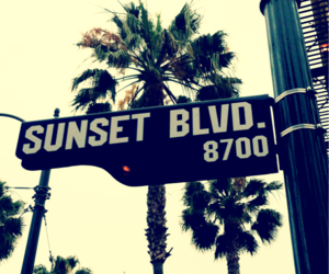 california, sunset, and sunset blvd image