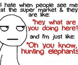 funny, elephant, and lol image
