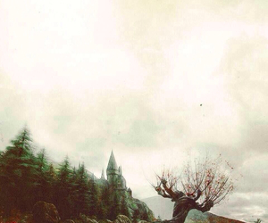 books, weasley, and whomping willow image