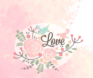 pink, love, and bird image