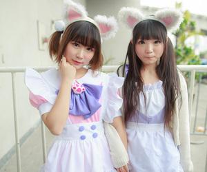 maid, nekomimi, and sweet lolita image